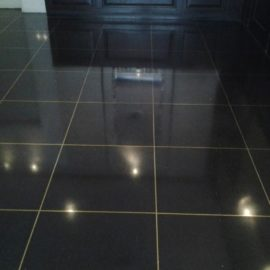 Terrazzo Floor Replace and Polish